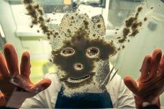Chemik w osobistym ochronnym wyposażeniu pracuje z lekami w laboratorium zdjęcie stock