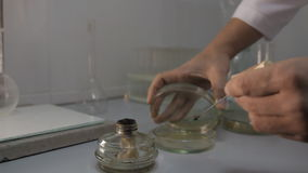 Chemikalie experimentiert Feuer stock video footage