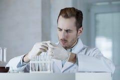 Chemiker in den Handschuhen, die mit Reagenzien arbeiten Stockfoto