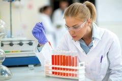 Chemiker, der Probe mit Pipette entnimmt lizenzfreie stockfotos