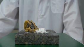 Chemiker oder Wissenschaftler der medizinischen Forschung fügt Feuer einer heftigen chemischen Reaktion hinzu Chemische Erfahrung stock video footage