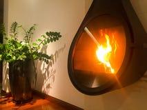 Cheminée à la maison moderne avec la plante en pot Image stock