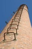 cheminée de 19ème siècle Photos stock