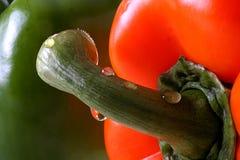 Cheminée de poivron rouge Image libre de droits