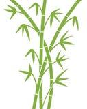 Cheminées en bambou vertes Photos libres de droits
