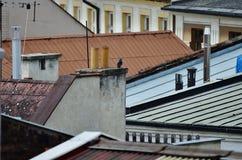 Cheminées et toits Images stock