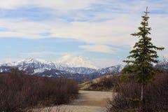 Chemin à Denali Photo libre de droits