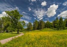Chemin à jaillir parc Image libre de droits