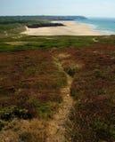 Chemin à la plage Image libre de droits