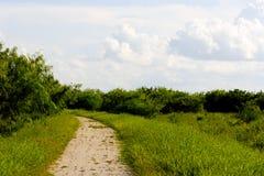 Chemin à travers la campagne Photos stock