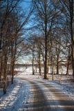 Chemin à travers la forêt en hiver photographie stock