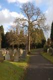 Chemin à travers le cimetière Image stock