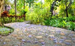 Chemin à travers le parc de la Thaïlande à l'île de Chang de KOH Photos stock