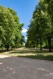 Chemin à travers le parc de ville Photo libre de droits