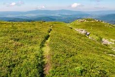 Chemin à travers le pré herbeux aux rochers énormes image libre de droits