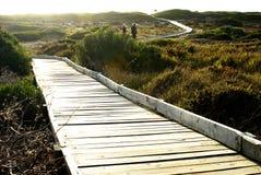 Chemin à travers le reserv de nature Images stock