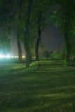Chemin à travers le stationnement la nuit Photo libre de droits