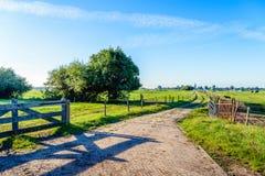 Chemin étroit entre les barrières des prés aux Pays-Bas Photo libre de droits