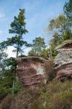 chemin étroit pour augmenter dans la forêt Photographie stock