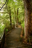 Chemin Images stock