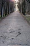 Chemin Photo libre de droits