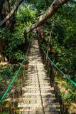 Chemin accrochant de pont en bois à travers la grande jungle de branche d'arbre avec le rail de corde, les feuilles d'arbre et l' Image stock