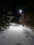 Chemin allumé Photo libre de droits