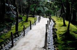 Chemin ambiant Photo libre de droits