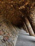 Chemin arqué dans l'aune de ¼ du parc GÃ Photos stock
