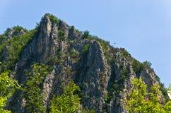 Chemin au nid d'Eagle à la gorge de Trešnjica avec un aigle chauve haut dans le ciel Photographie stock libre de droits
