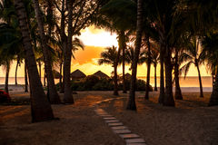 Chemin au paradis Photographie stock libre de droits