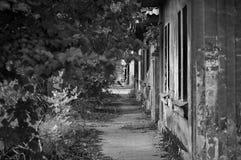 Chemin au passé Photo stock