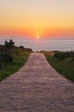 Chemin au soleil Photos stock