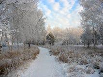 Chemin au stationnement snow-covered de l'hiver. Arbres givrés Photo stock