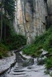 Chemin aux roches Photos libres de droits
