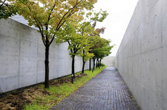 Chemin avec des arbres de cerise-fleur Photographie stock libre de droits