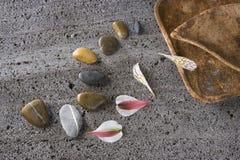 Chemin avec des pierres Photos stock