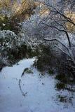 Chemin avec la neige images stock