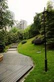 Chemin avec la pelouse photo libre de droits