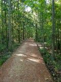 Chemin boisé à Tallahassee la Floride photographie stock libre de droits