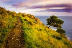 Chemin côtier Images libres de droits