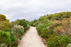 Chemin côtier : Dunsborough, Australie occidentale Photographie stock