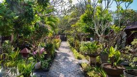 Chemin carrelé dans un jardin luxuriant dans Bali images stock