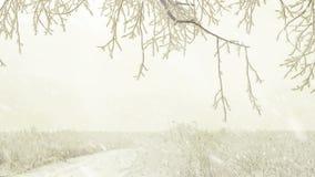 Chemin congelé de pré avec la neige en baisse clips vidéos