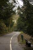Chemin courant à travers les bois images stock