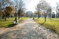 Chemin courbant vide en parc sur Sunny Morning Image libre de droits