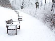 chemin couvert de neige en parc avec des bancs et des buissons Image stock