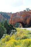 Chemin détourné scénique 12 de l'Utah Photo stock