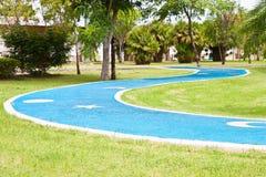 Chemin d'asphalte bleu par l'intermédiaire d'herbe verte Photo libre de droits