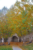 Chemin d'automne Photos stock